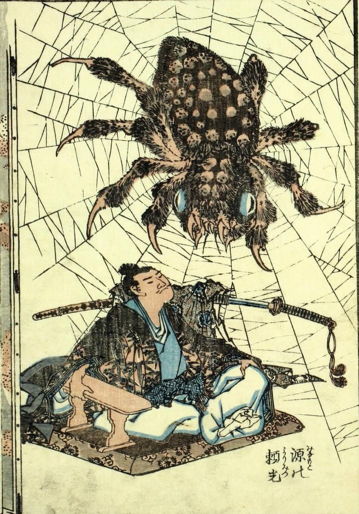 ad蜘蛛_Article: Daily Inspiration — Spiders | OpEdNews